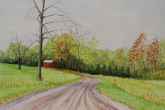 Auer Farm driveway